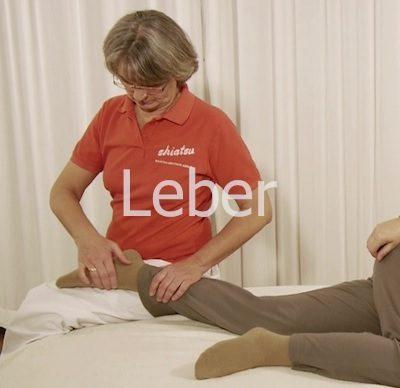 Shiatsu Lehrvideo Meridian Leber